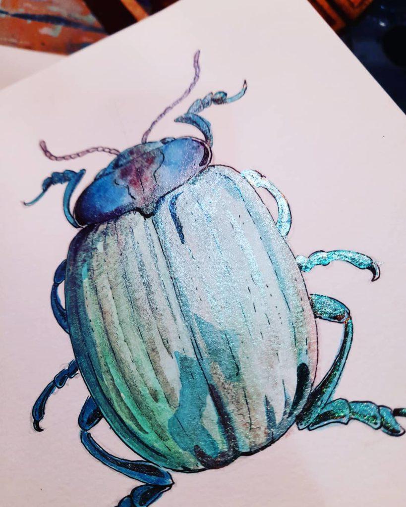 illustration encre de chine et aquarelle insecte